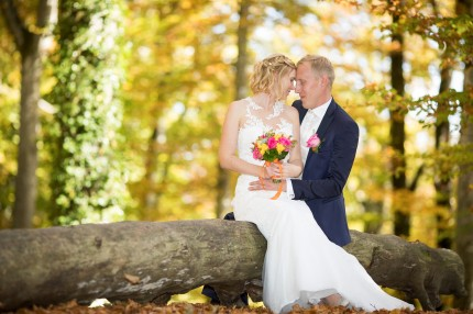 Mariage automne broye